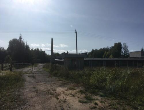 Kagu-Eesti tööstusalade arendamise eeldus on maade omandiküsimuse lahendamine
